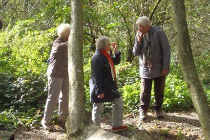 Zomerprogramma 55+ en Senioren